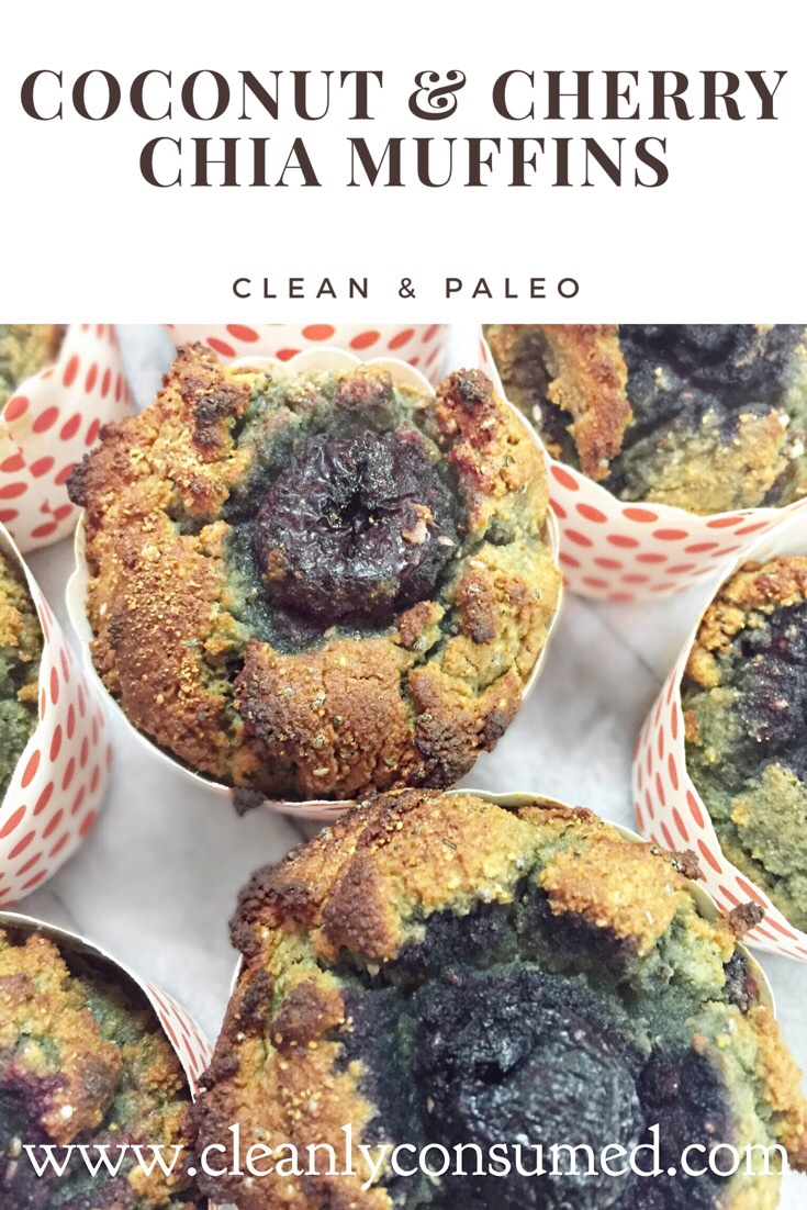 These may be Clean and Paleo but they are also high in Protein & Fiber! Great grab and go option!