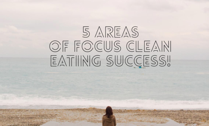 Clean Living- The Big Picture Approach that will Make You Suceed!