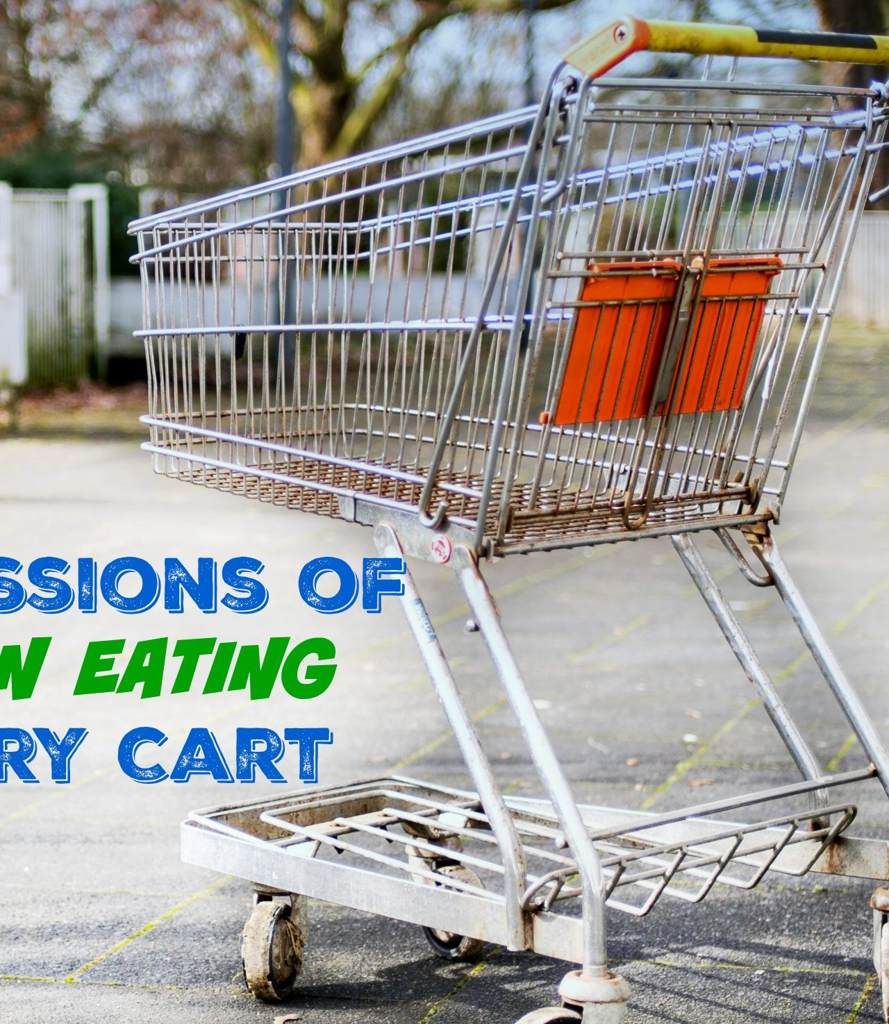 Confessions of a Clean Eating Shopping Cart Part 2