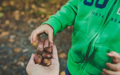How Parenthood is a Life of Faith, Guidance in Parenting