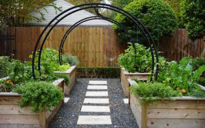 Herb Garden and The Rooted Garden Bring in Better Health